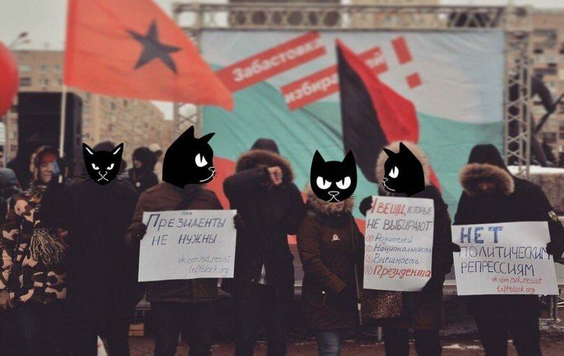 Забастовка избирателей в Нижнем Новгороде