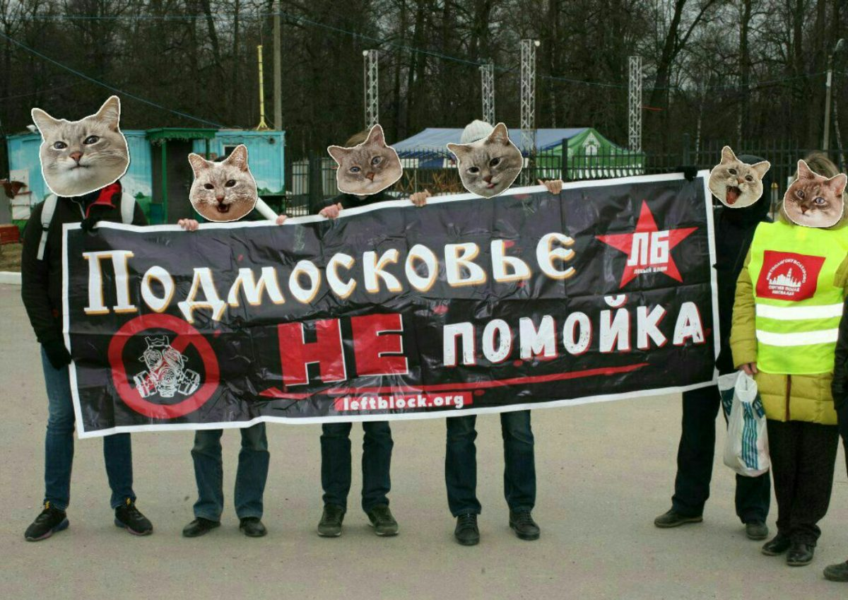Сергиев Посад: власти сорвали экологическую акцию